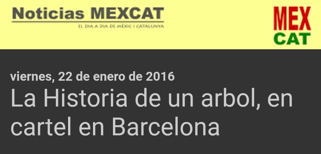 Noticias Mex Cat